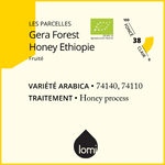 Fiche descriptive du café bio éthiopien Gera Forest Honey Process BIO par Lomi