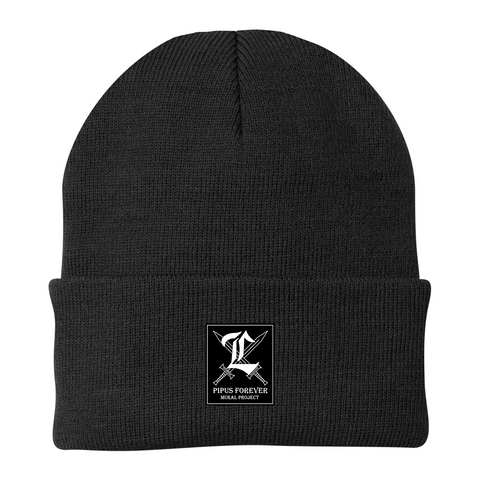 Mural Project Beanie