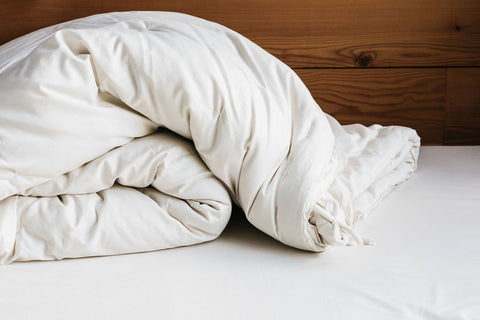 Holy Lamb Organics All Seasons Wool Comforter