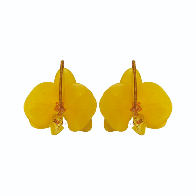 Orchid Yellow Hoops