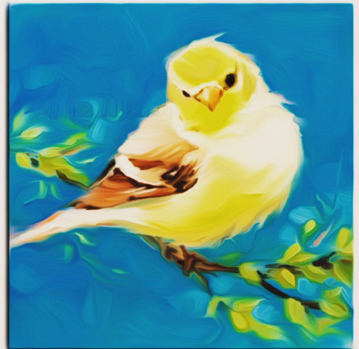 Beautiful Sparrow || DIY Painting || Adult Painting