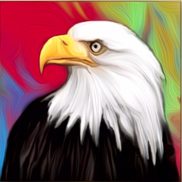 Eagle Beautiful Painting || DIY Painting || Adult Painting