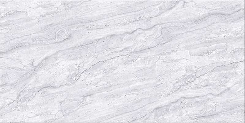 Jupiter Grey 60x120cm Porcelain Floor Tile (12040)