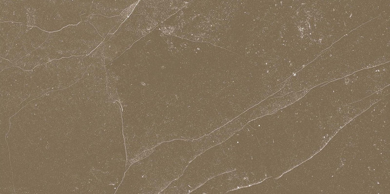 Veronica Brown 60x120cm Porcelain Floor Tile (12517)