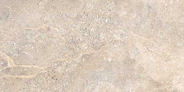 Dyna Austin 30x60cm Porcelain Wall and Floor Tile (PGVT Series)