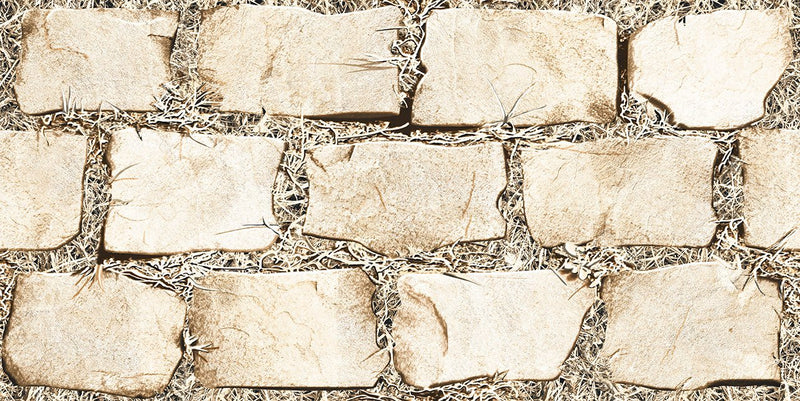 Mudstone Milky 30x60cm Porcelain Wall Tile (Elevation Series)