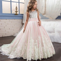 Mishky Gown, Elegant Tulle Trailing Ball Gown