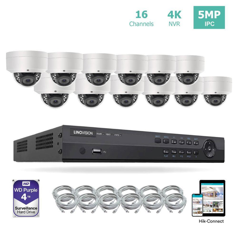 16 Channel 4K PoE Security Camera System 16CH 4K NVR and 12 Outdoor 5MP Dome PoE IP Cameras with 4TB HDD
