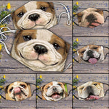 🐕A bulldog got into the horse herd🐕  (Includes six different models)- on sale