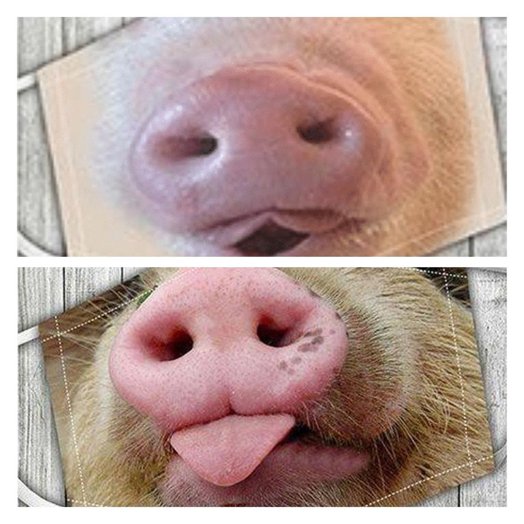 🐷We caught two pig🐷(Includes two different models)- on sale
