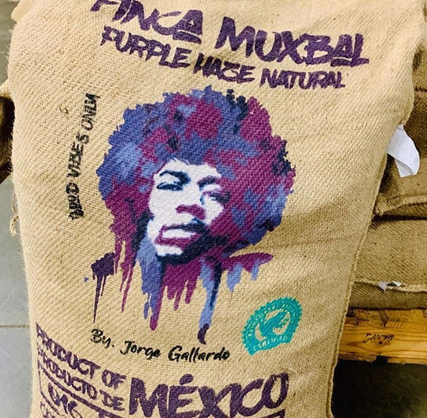 Purple Haze - Mexico Natural