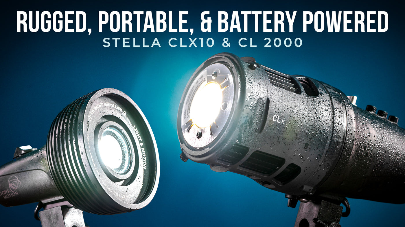 StellaPro CLx10 & CL 2000 LED Light Review (Rugged, Portable, & Battery Powered)