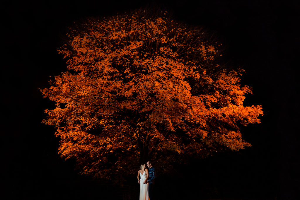 Jason Vinson bride and groom at night with red maple tree