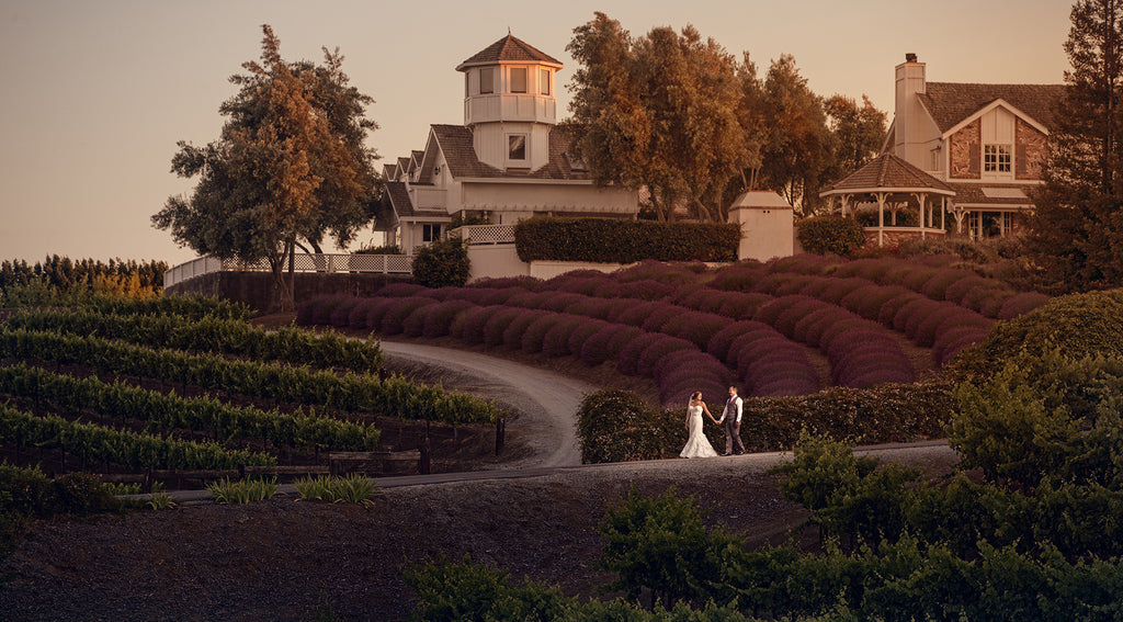 Manuel Ortega bride and groom walking through winery grapevines and lavender fields