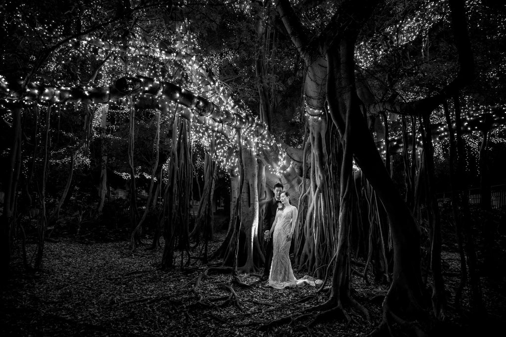 Marcus_Bell_Bride and Groom under Banyan Tree with twinkle lights black and white
