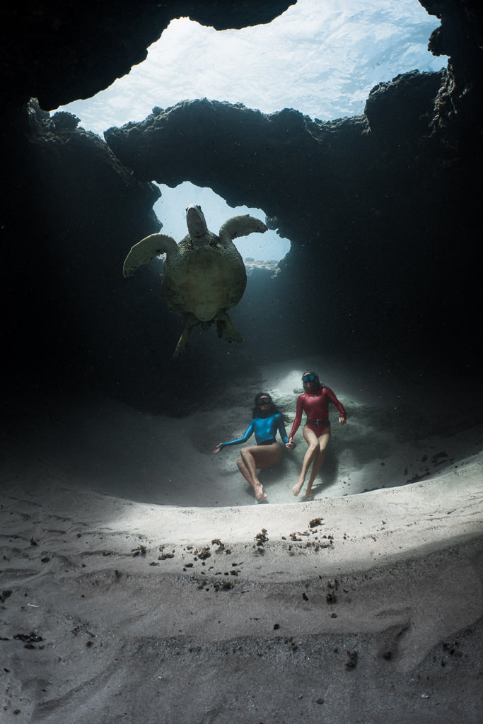Terry Flanagan two divers and sea turtle on reef