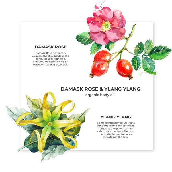 Damask Rose Ylang Ylang Body Oil - juicychemistry