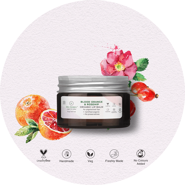 Blood Orange & Rosehip Lip Balm - juicychemistry