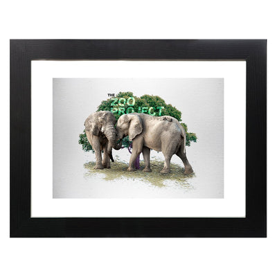 The Zoo Project Elephants A3 Framed Print-My Essential