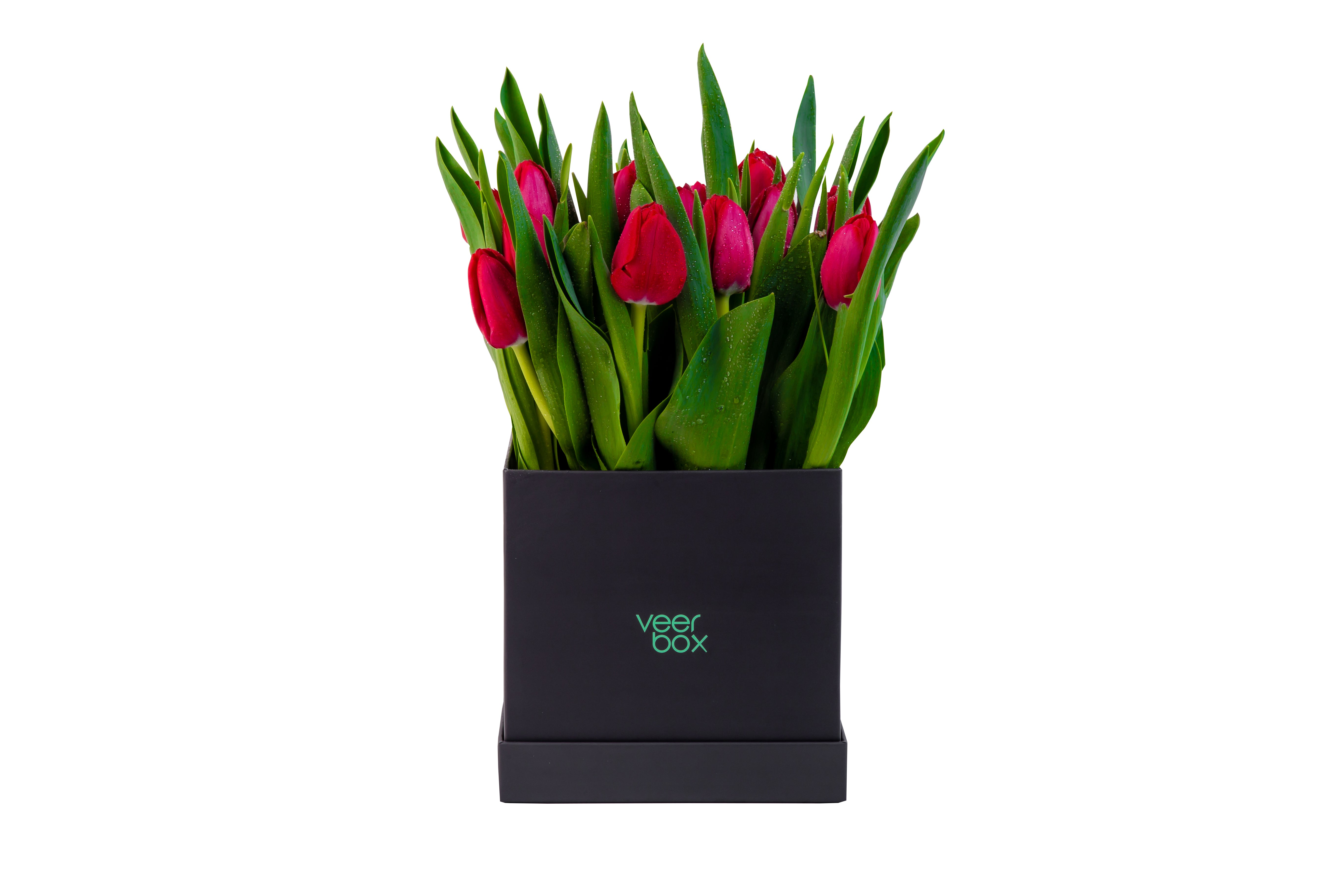 Red Tulip Veerbox