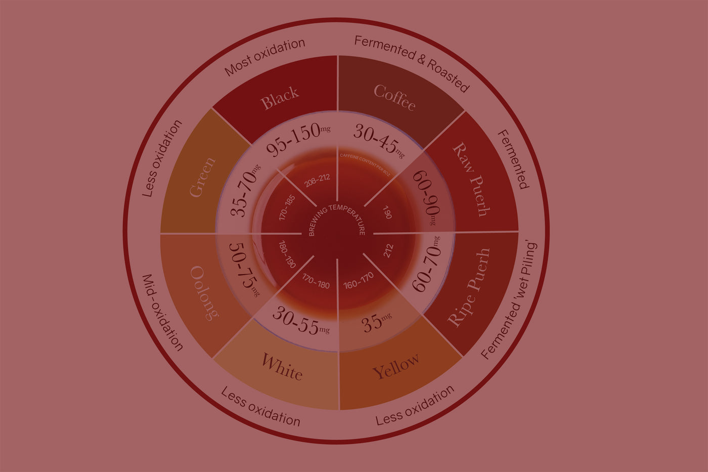 How Does Puerh Compare to Other Teas?