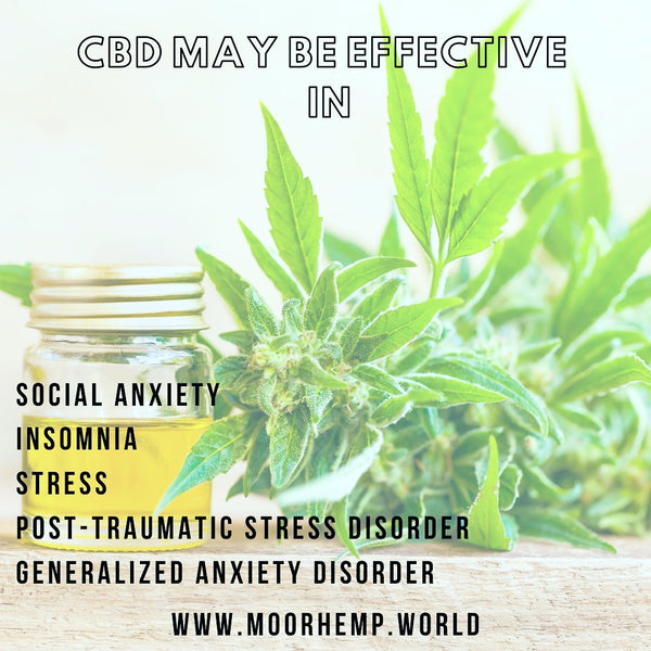 CBD & POST-TRAUMATIC DISORDER