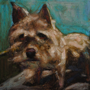 Donation ~ Pooch - An Act of Dog-Museum of Compassion