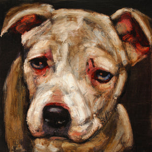 Donation ~ Lulu - An Act of Dog-Museum of Compassion