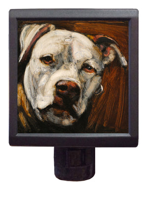 Dog Art Night-Light ~ Ahimsa Abella - An Act of Dog-Museum of Compassion