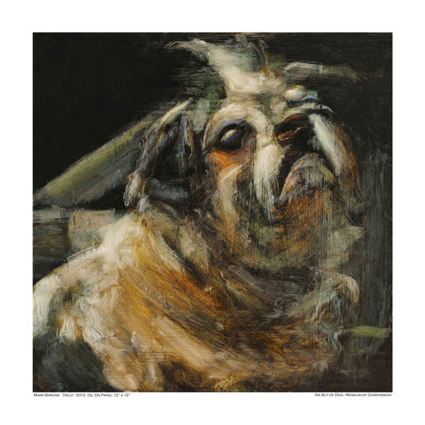 Enchanting Halo-Dog Print - An Act of Dog-Museum of Compassion