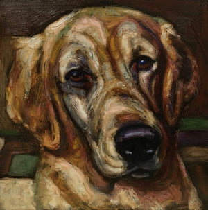 "All Animals/Pet Portraits-24"" x 24"" - An Act of Dog-Museum of Compassion"