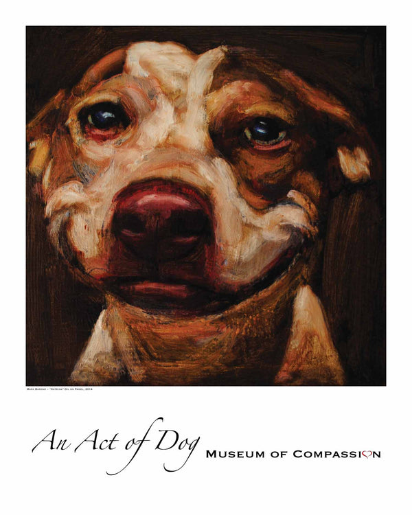 Katrina - Giclee Dog Print - An Act of Dog-Museum of Compassion