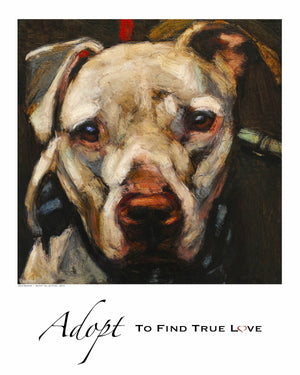 Adopt-To Find True Love/ Giclée Dog Print - An Act of Dog-Museum of Compassion