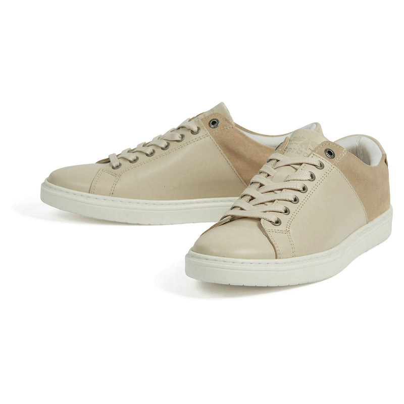 Barbour Catlina Trainers