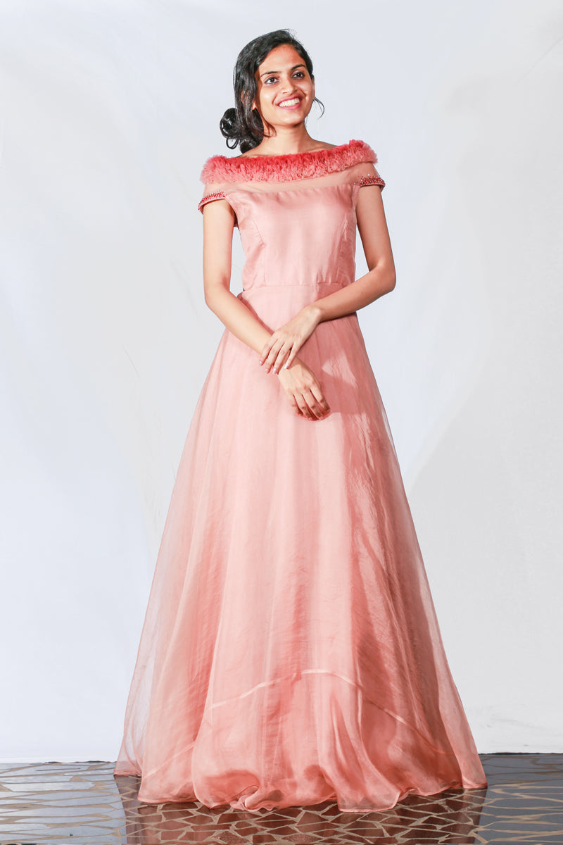 Light Peach Organza Embroidered Gown