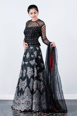 Black Appliqued Net Embroidery-rawsilk Lehenga