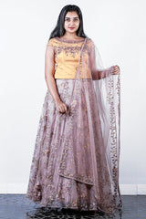 Yellow-rosy Brown Net Embroidered Lehenga