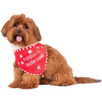 Santa Paws Christmas Pet Bandana
