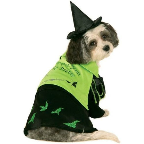 Wicked Witch of The West Wizard of Oz Pet Costume