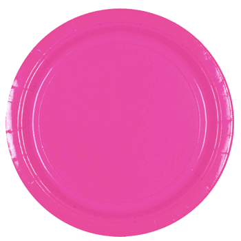 Hot Pink Large Party Plates, Paper