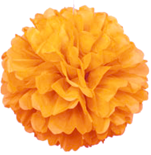 Orange Puff Ball Tissue Decorations