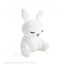Load image into Gallery viewer, Lil Dreamers Soft Touch LED Light - Bunny
