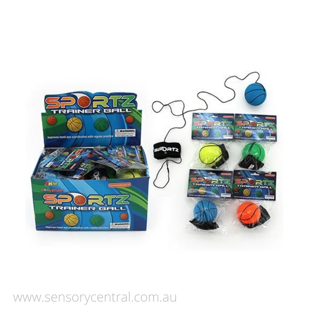 Sportz Trainer Boomerang Ball