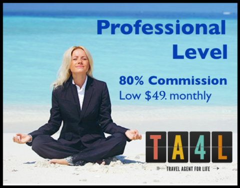 Professional Level - 80% Commission, $49 Monthly Fee