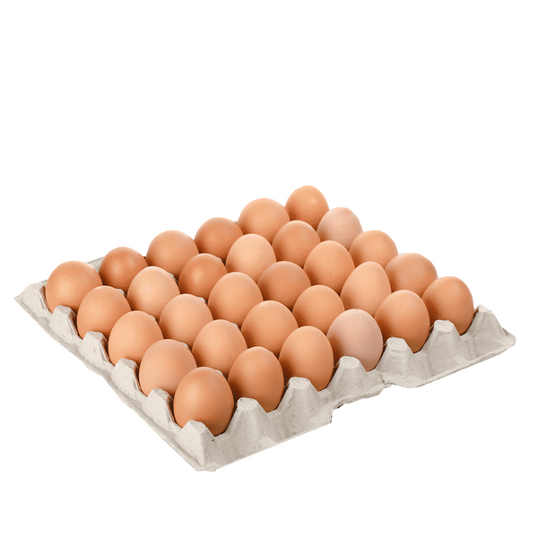 EGGS FREE RANGE TRAY