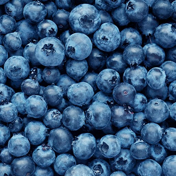 BLUEBERRIES NZ ORGANIC 125G PUNNET