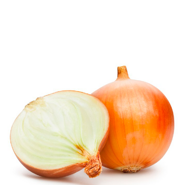 ONION BROWN ORGANIC