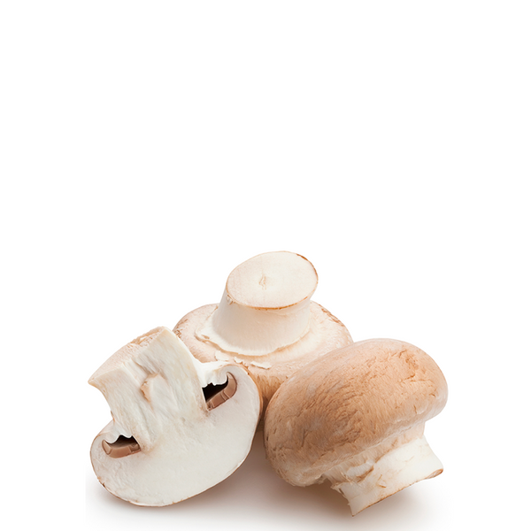MUSHROOMS BUTTON ORGANIC 250G