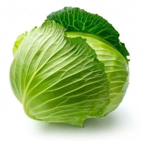 CABBAGE GREEN ORGANIC PER EACH