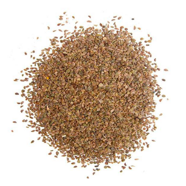 THE SPICE TRADER CELERY SEEDS 30G